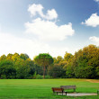 The bench in the park during early spring day - Stock Photo