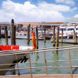 Marine moorage , sea port in Venice. - Stockfoto