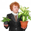 Friendly senior woman with house plant, flowers. — Stock Photo