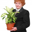 Friendly senior woman with house plant, flowers. - Stock Photo