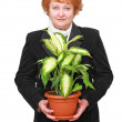 Stock Photo: Friendly senior womwith house plant, flowers.