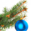 Christmas decoration-glass ball on fir branches. — Stock Photo #6513677