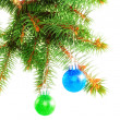 Christmas decoration-glass ball on fir branches. - Lizenzfreies Foto