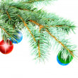 Christmas decoration-glass ball on fir branches. — Stockfoto