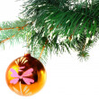 Christmas decoration-glass ball on fir branches. — Stock Photo