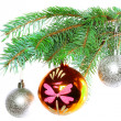 Christmas decoration-glass ball on fir branches. — Stock Photo #6514042