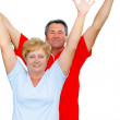 Elderly couple hands-up. — Stock Photo