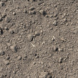 Soil texture background. - Stock Photo