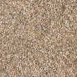 Texture of beach sea sand. — Stock Photo