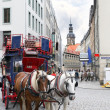 Urban life of Dresden.Tourist's carriage - 图库照片
