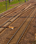 Railway network — Stockfoto