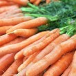 Frash Carrots — Stock Photo #6695742