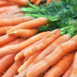 Frash Carrots — Stock Photo