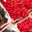 Fresh Currants — Stock Photo #6695841