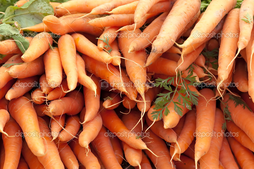 Fresh Carrots At The Local Market  Stock Photo #6695849