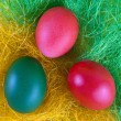 Colour easter eggs — Stock fotografie