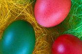 Colour easter egg — Stock Photo