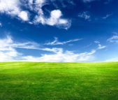 Background of cloudy sky and grass — Stok fotoğraf