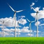 Ecology - Wind of change — Stock Photo #5399107