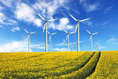 Windmill farm on the rapeseed field — Stock Photo