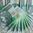 Polish money.Financial texture abstract. - Stock Photo