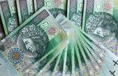 Polonais money.financial texture abstraite. — Photo