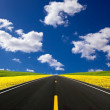 Road travelling through a Canola Field - Foto de Stock