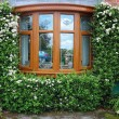 English style Window and Door - 