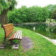 Park with bench and water — Stock Photo
