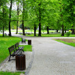 Green park — Stock Photo #5470421