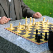 Chess in the park - 图库照片