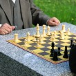 Chess in the park - Photo