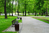 Grünen park — Stockfoto