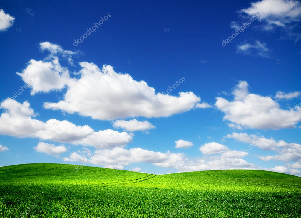 Green field and blue sky — Stock Photo #5475308