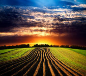 Landskap vid solnedgången — Stockfoto