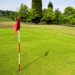 Golf field - Stock Photo
