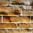 Old wall — Stock Photo #5793500