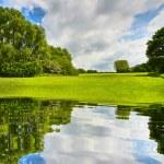 Summer ecology landscape — Stock Photo