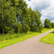 Path at the park — Stock Photo