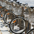 Stock Photo: Group of bicycles in the row