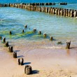 Coast with wooden breakwaters — Stock Photo