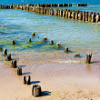 Coast with wooden breakwaters - Stock Photo