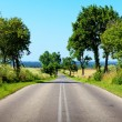 Empty Road — Stock Photo #6132282