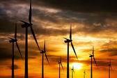Wind farm at sunset — Foto Stock