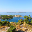 Summer landscape of dalmatia - Foto Stock