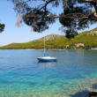 Boat Harbor,Adriatic,Croatia — Stockfoto #6572908