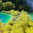 National park Plitvice - Stock Photo