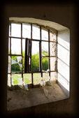 окна — Стоковое фото