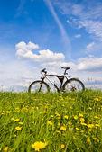Vélo — Photo