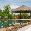 View of nice tropical pool  with exotic hut on the back - Stock Photo